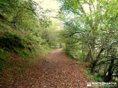 Parque Natural Saja-Besaya y Valderredible (Monte Hijedo) senderismo nivel bajo desafío senderista